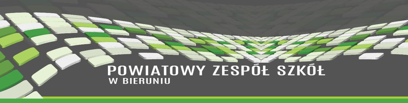 PZS Bieruń - Technikum, Branżowa Szkoła I stop